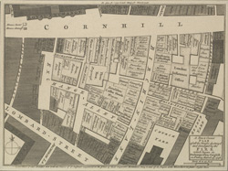 A New and Corrected PLAN of all the Houses destroy'd and damaged by the FIRE which began in Exchange Alley, Cornhill on Friday March 25, 1748